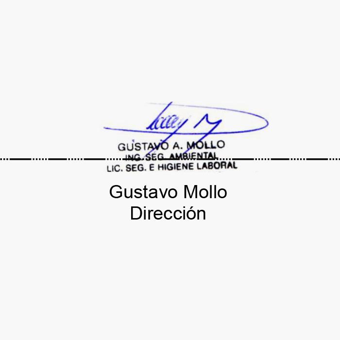 Firma_Gustavo_Mesa de trabajo 1